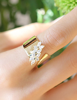 238156 - <RI362-JH02> [Birth of Beauty] Sarah cubic Leaf ring