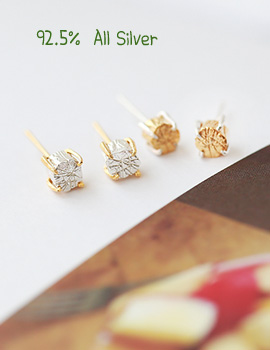 1020529 - <ER717-BD06> [Silver] vonin earrings