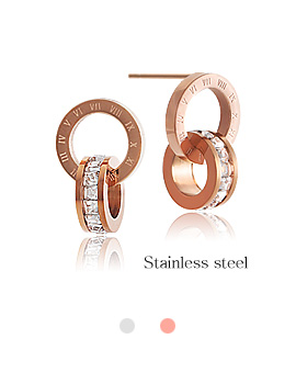 1044217 - <ER957_DD17> [Stainless steel] classy earrings