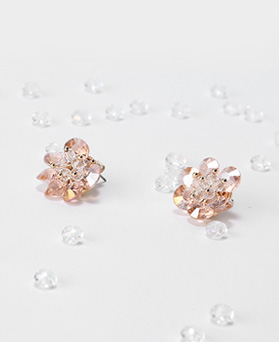 1046700 - <ER1590_DJ03> Eli cubic earrings