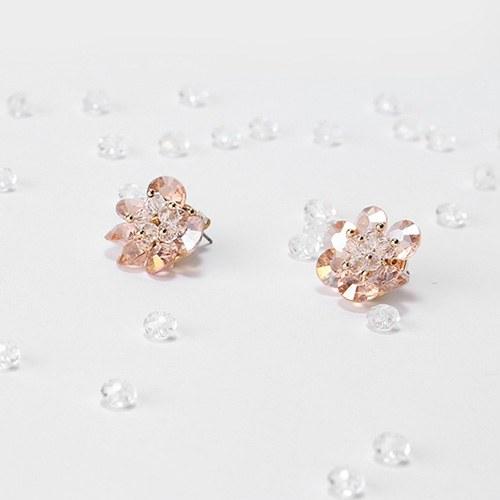 1046841 - <ER1590_DJ03> [clip type] eli cubic earrings