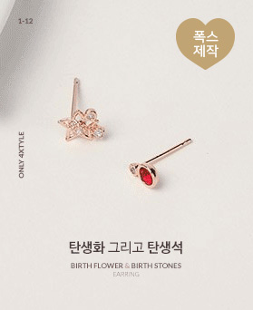 1046746 - <ER1606_IG15> Birth of the birthstone and birthstone earrings