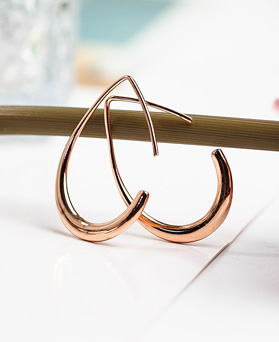 1048180 - <ER2039_DC25> [Silver] simple Leaf ring earrings