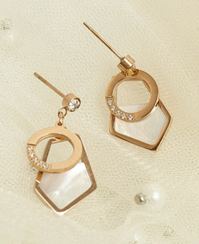 1049337 - <ER2182_DF30> [Stainless Steel] Mardia drop earrings