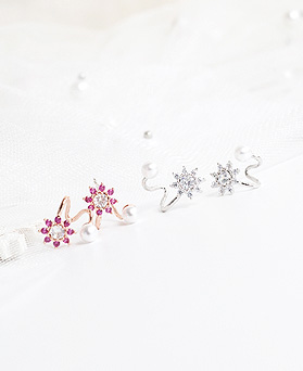 1050008 - <ER2252_DJ09> [Silver Post] Narin Flower earrings